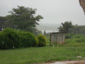 Regen07